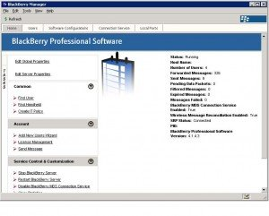 BPS1 300x241 BlackBerry Professional Software   Adding Users